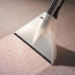 carpet-cleaning-wand1-224x300